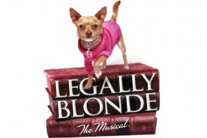 Legally Blonde Photo From HOTA
